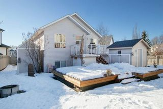 Photo 29: 26 Jensen Heights Place NE: Airdrie Detached for sale : MLS®# A1062665