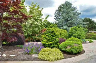 Photo 19: 12939 22A AVENUE in South Surrey White Rock: Elgin Chantrell Home for sale ()  : MLS®# R2378968