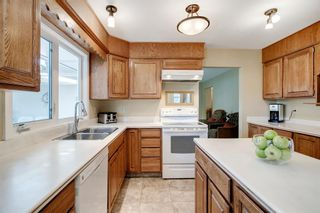 Photo 25: 439 WILDERNESS Drive SE in Calgary: Willow Park Detached for sale : MLS®# A1026738