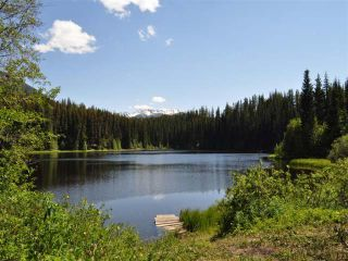 Photo 2: Mead Lake: Land for sale (Whistler)
