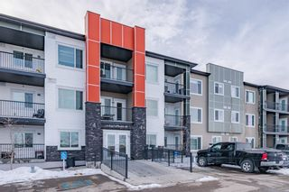 Main Photo: 303 16 Sage Hill Terrace NW in Calgary: Sage Hill Apartment for sale : MLS®# A1070305