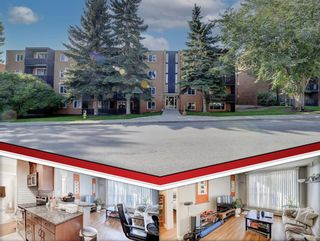 Main Photo: 403 507 57 Avenue SW in Calgary: Windsor Park Apartment for sale : MLS®# A1146991