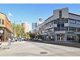 Photo 18: 1007 13 Avenue SW in Calgary: Single Level Apartment for sale : MLS®# C3539830