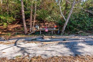 Photo 9: 3845 Shingle Spit Rd in : Isl Hornby Island House for sale (Islands)  : MLS®# 870117
