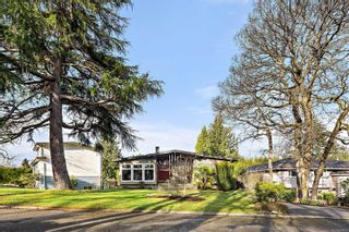 Main Photo: 3940 Margot Pl in : SE Maplewood House for sale (Saanich East)  : MLS®# 870821
