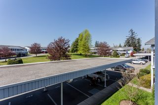 """Photo 13: 250 32691 GARIBALDI Drive in Abbotsford: Abbotsford West Townhouse for sale in """"Carriage Lane"""" : MLS®# R2262736"""