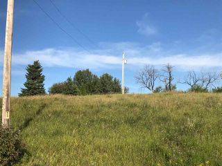 Photo 32: 57525 Rg Rd 214: Rural Sturgeon County Rural Land/Vacant Lot for sale : MLS®# E4266088