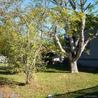 Photo 3: 2355 Orchard Ave in SIDNEY: Si Sidney South-East Land for sale (Sidney)  : MLS®# 799546
