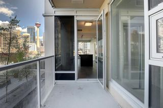 Photo 27: 303 211 13 Avenue SE in Calgary: Beltline Apartment for sale : MLS®# A1108216