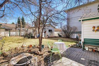 Photo 40: 116 Bowers Street NE: Airdrie Detached for sale : MLS®# A1095413