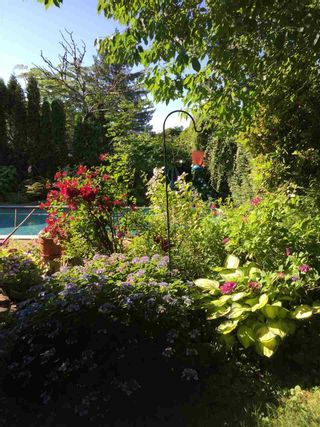 Photo 12: 11724 209 Street in Maple Ridge: Southwest Maple Ridge House for sale : MLS®# R2434650
