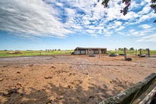 Photo 17: 270064 Township Road 234A in Rural Rocky View County: Rural Rocky View MD Detached for sale : MLS®# A1127249