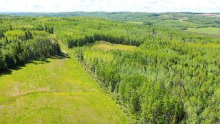 Photo 10: 13934 PACKHAM FRONTAGE Road: Charlie Lake Agri-Business for sale (Fort St. John (Zone 60))  : MLS®# C8039465