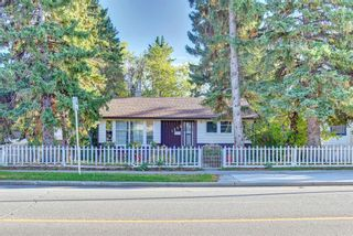 Photo 47: 1235 20 Avenue NW in Calgary: Capitol Hill Detached for sale : MLS®# A1146837