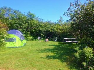 Photo 24: 50 Whale Cove Road in Whale Cove: 401-Digby County Commercial  (Annapolis Valley)  : MLS®# 202020501