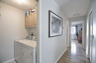 Photo 34: 105 5105 Valleyview Park SE in Calgary: Dover Apartment for sale : MLS®# A1138950