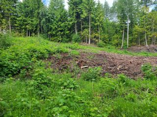 Photo 14: 1395 Taylor Road, in Sorrento: Vacant Land for sale : MLS®# 10229703