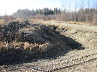 Photo 10: NW 24-54 RR 131: Niton Junction Rural Land for sale (Edson)  : MLS®# 32590