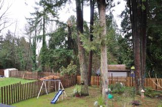 Photo 14: 1626 ROCHESTER Avenue in Coquitlam: Central Coquitlam House for sale : MLS®# R2029117