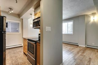 Photo 7: 1 1715 13 Street SW in Calgary: Lower Mount Royal Apartment for sale : MLS®# A1082017