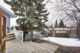 Photo 35: 7243 65 Avenue NW in Calgary: Silver Springs House for sale : MLS®# C4174046