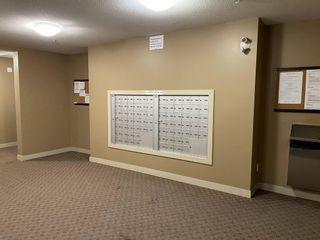 Photo 5: 303 15 Saddlestone Way NE in Calgary: Saddle Ridge Apartment for sale : MLS®# A1099242