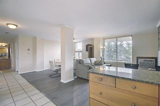 Photo 12: 302 4603 Varsity Drive NW in Calgary: Varsity Apartment for sale : MLS®# A1117877