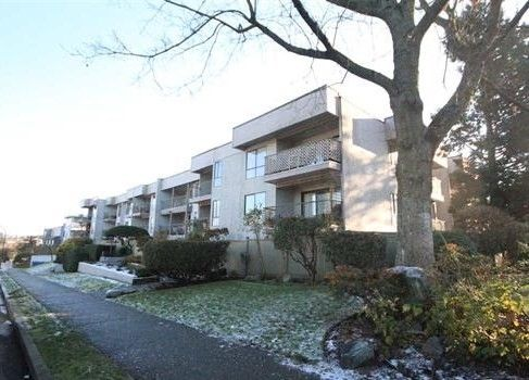 Main Photo: 309 808 E 8TH Avenue in Vancouver: Mount Pleasant VE Condo for sale (Vancouver East)  : MLS®# R2018157