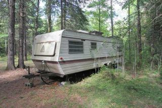 Photo 12: 300 Pinery Road in Kawartha Lakes: Rural Somerville Property for sale : MLS®# X4840235
