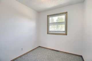 Photo 16: 6163 Bowwood Drive NW in Calgary: Bowness Detached for sale : MLS®# A1116947