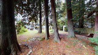 Photo 16: 41756 GOVERNMENT Road in Squamish: Brackendale House for sale : MLS®# R2625589