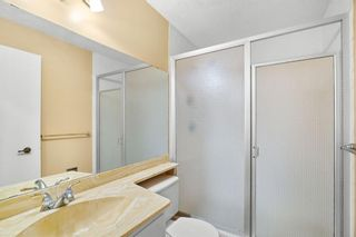 Photo 19: 207 Radcliffe Place SE in Calgary: Albert Park/Radisson Heights Detached for sale : MLS®# A1149087