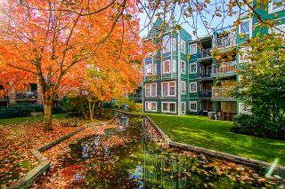"Photo 30: 311 1189 WESTWOOD Street in Coquitlam: North Coquitlam Condo for sale in ""LAKESIDE"" : MLS®# R2515994"