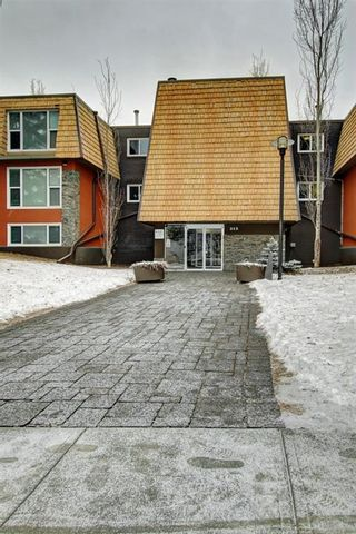 Photo 1: 301 315 50 Avenue SW in Calgary: Windsor Park Apartment for sale : MLS®# A1046281