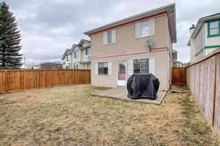 Photo 32: 279 Coral Springs Circle NE in Calgary: Coral Springs Detached for sale : MLS®# A1083552