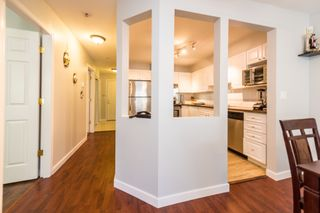 """Photo 8: 312 2678 DIXON Street in Port Coquitlam: Central Pt Coquitlam Condo for sale in """"The Springdale"""" : MLS®# R2307158"""