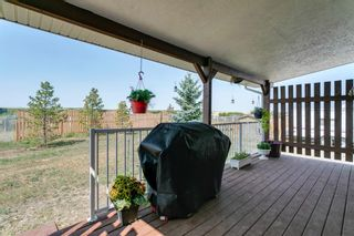 Photo 31: 183082 Range Road 264: Rural Vulcan County Detached for sale : MLS®# A1136426