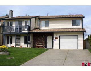 """Photo 1: 33287 NEWLANDS Avenue in Abbotsford: Central Abbotsford House for sale in """"QUIET BABICH AREA"""" : MLS®# F2908054"""