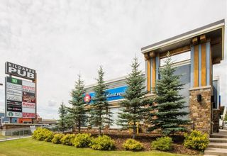 Photo 10: 135 SILVERADO Common SW in Calgary: Silverado Row/Townhouse for sale : MLS®# A1075373