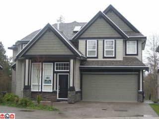 "Photo 1: 14551 62ND Avenue in Surrey: Sullivan Station House for sale in ""SULLIVAN MEADOWS"" : MLS®# F1206195"