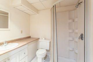 Photo 38:  in Edmonton: Zone 22 House for sale : MLS®# E4254166