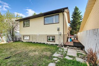 Photo 40: 20 Whitefield Close NE in Calgary: Whitehorn Detached for sale : MLS®# A1101190