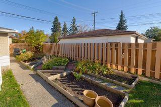 Photo 28: 5303 114B Street in Edmonton: Zone 15 House for sale : MLS®# E4264900