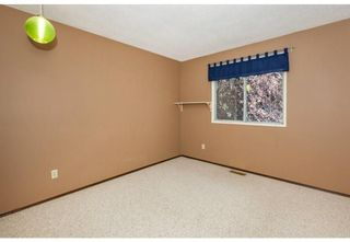 Photo 19: 1715 58 Street NE in Calgary: Pineridge Detached for sale : MLS®# A1140401