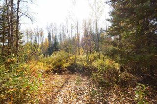 """Photo 6: Lot 8 GLACIER VIEW Road in Smithers: Smithers - Rural Land for sale in """"Silvern Estates"""" (Smithers And Area (Zone 54))  : MLS®# R2410914"""