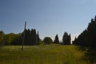 Photo 6: 54325 RR 255: Rural Sturgeon County Rural Land/Vacant Lot for sale : MLS®# E4235892