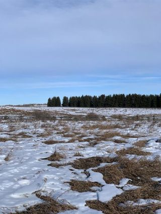 Photo 8: 298086 27 Street W: Rural Foothills County Residential Land for sale : MLS®# A1067248
