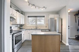 Photo 6: 80 Erin Grove Close SE in Calgary: Erin Woods Detached for sale : MLS®# A1107308