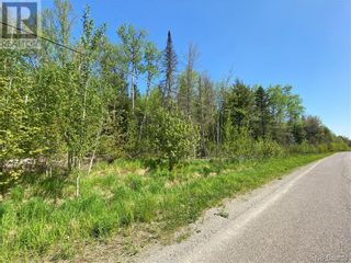 Photo 22: 5264 Rte 770 in Rollingdam: Vacant Land for sale : MLS®# NB058269