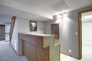Photo 26: 19 TEMPLEBY Road NE in Calgary: Temple Residential for sale : MLS®# A1027919